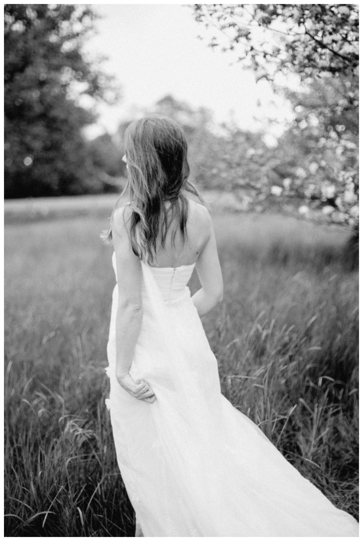 After-Wedding-Fotoshooting-Hannover-Kirsch-Apfelblütenbäume_0017