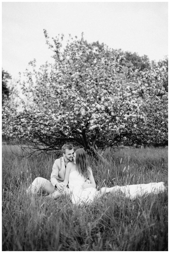 After-Wedding-Fotoshooting-Hannover-Kirsch-Apfelblütenbäume_0029